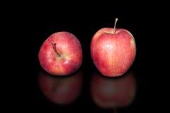 Πολωνικό μήλο με τη φυσική οργανική καλλιέργεια Χωρίς χημικές ουσίες και φυτοφάρμακα στο καθαρό μαύρο υπόβαθρο S Στοκ φωτογραφία με δικαίωμα ελεύθερης χρήσης