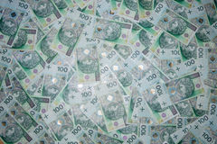 Πολωνικό νόμισμα 100 zloty Στοκ εικόνα με δικαίωμα ελεύθερης χρήσης