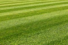 ποδόσφαιρο πεδίων σχεδίου εσείς Στοκ εικόνα με δικαίωμα ελεύθερης χρήσης
