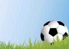 Ποδόσφαιρο στη χλόη Στοκ φωτογραφίες με δικαίωμα ελεύθερης χρήσης