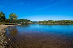 Πολύβλαστη βλάστηση γύρω από τη λίμνη Raystown, στην Πενσυλβανία κατά τη διάρκεια του ποσού Στοκ εικόνες με δικαίωμα ελεύθερης χρήσης