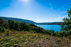 Πολύβλαστη βλάστηση γύρω από τη λίμνη Raystown, στην Πενσυλβανία κατά τη διάρκεια του ποσού Στοκ Εικόνα