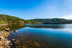 Πολύβλαστη βλάστηση γύρω από τη λίμνη Raystown, στην Πενσυλβανία κατά τη διάρκεια του ποσού Στοκ εικόνα με δικαίωμα ελεύθερης χρήσης
