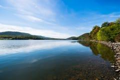 Πολύβλαστη βλάστηση γύρω από τη λίμνη Raystown, στην Πενσυλβανία κατά τη διάρκεια του ποσού Στοκ φωτογραφίες με δικαίωμα ελεύθερης χρήσης