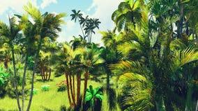 Πολύβλαστη βλάστηση στη ζούγκλα Στοκ Φωτογραφία
