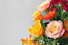 Πολύχρωμα λουλούδια με το γκρίζο υπόβαθρο Στοκ Εικόνες