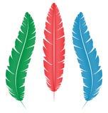 Πολύχρωμα φτερά στο λευκό διανυσματική απεικόνιση