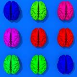 Πολύχρωμοι χαμηλοί εγκέφαλοι πολυγώνων Στοκ εικόνες με δικαίωμα ελεύθερης χρήσης