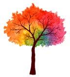 Πολύχρωμο δέντρο στο watercolor Στοκ Εικόνες