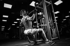Πολύ αθλητικός τύπος δύναμης bodybuilder Στοκ Φωτογραφία