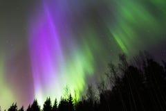 Εκροή 2 χρώματος Στοκ Φωτογραφίες