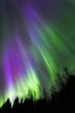 Εκροή 4 χρώματος Στοκ Φωτογραφία