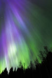 Εκροή 5 χρώματος Στοκ Εικόνες