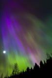 Εκροή 6 χρώματος Στοκ Φωτογραφίες
