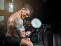 Πολύ ο αθλητικός τύπος δύναμης bodybuilder, εκτελεί την άσκηση με τους αλτήρες, στη σκοτεινή GY, Στοκ Φωτογραφίες