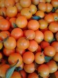 Πολύ πορτοκάλι στην Κίνα Στοκ Φωτογραφία