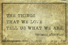 Πράγματα αγαπάμε Aquinas Στοκ Φωτογραφία