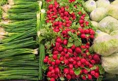 Πράσινα λάχανο και ραδίκια κρεμμυδιών Στοκ Εικόνα