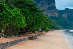 Πράσινα δέντρα στην αμμώδη ακτή του θερέτρου AO Nang Krabi Στοκ εικόνα με δικαίωμα ελεύθερης χρήσης
