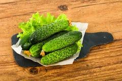 Πράσινα αγγούρια Στοκ εικόνα με δικαίωμα ελεύθερης χρήσης