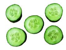 Πράσινα αγγούρια Στοκ Εικόνες