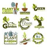 Πράσινα απομονωμένα κήπος εικονίδια που τα εργαλεία και οι εγκαταστάσεις διανυσματική απεικόνιση