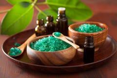 Πράσινα βοτανικά αλατισμένα και ουσιαστικά πετρέλαια για το υγιές λουτρό SPA στοκ εικόνες