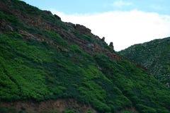 Πράσινα βουνά και φαράγγια της κατάστασης του Κολοράντο στοκ εικόνες με δικαίωμα ελεύθερης χρήσης