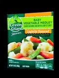Πράσινα γιγαντιαία φυτικά παγωμένα λαχανικά μωρών ατμοπλοίων Στοκ Εικόνες