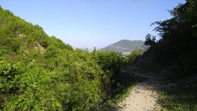 πράσινα δάση άνοιξη στα περίχωρα Sheki Στοκ φωτογραφία με δικαίωμα ελεύθερης χρήσης