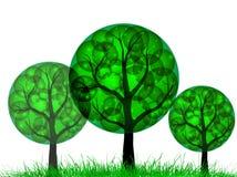 πράσινα δέντρα Στοκ φωτογραφία με δικαίωμα ελεύθερης χρήσης