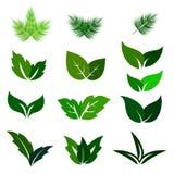 Πράσινα εικονίδια eco φύλλων καθορισμένα Στοκ Εικόνες