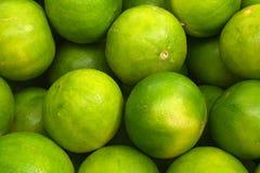 πράσινα λεμόνια στοκ εικόνες