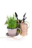 Πράσινα εργαλεία χλόης και κήπων Στοκ Εικόνες