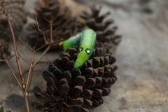 Πράσινα ζώα καμπιών σκουληκιών στο υπόβαθρο θαμπάδων κώνων ξύλου και πεύκων στοκ φωτογραφία με δικαίωμα ελεύθερης χρήσης