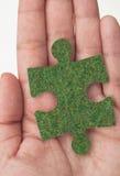 πράσινα διαλύματα Στοκ εικόνες με δικαίωμα ελεύθερης χρήσης