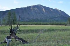 Πράσινα λιβάδια στην κοιλάδα βουνών Στοκ φωτογραφία με δικαίωμα ελεύθερης χρήσης