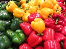 Πράσινα, κίτρινα και κόκκινα γλυκά πιπέρια Στοκ εικόνες με δικαίωμα ελεύθερης χρήσης