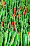 Πράσινα και κόκκινα πιπέρια τσίλι στοκ φωτογραφίες με δικαίωμα ελεύθερης χρήσης