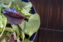Πράσινα και σπανάκι σαλάτας Στοκ Εικόνα