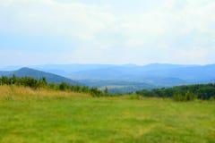 Πράσινα Καρπάθια βουνά στην Ουκρανία Στοκ Εικόνες