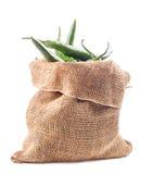 Πράσινα καυτά πιπέρια στοκ εικόνα με δικαίωμα ελεύθερης χρήσης