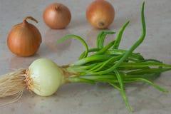 Πράσινα κρεμμύδια με τις ρίζες κίτρινοι βολβοί κρεμμυδιών Στοκ φωτογραφία με δικαίωμα ελεύθερης χρήσης