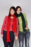 πράσινα κόκκινα μαντίλι κο&rh Στοκ φωτογραφία με δικαίωμα ελεύθερης χρήσης
