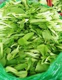 Πράσινα λαχανικά Στοκ Φωτογραφίες