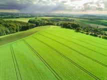 Πράσινα λιβάδι και σύννεφα Στοκ φωτογραφία με δικαίωμα ελεύθερης χρήσης