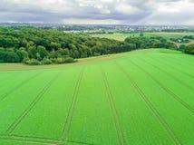 Πράσινα λιβάδι και σύννεφα Στοκ Φωτογραφίες
