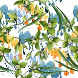 Πράσινα λουλούδια ορχιδεών Watercolor Floral βοτανικό λουλούδι Άνευ ραφής πρότυπο ανασκόπησης διανυσματική απεικόνιση