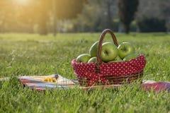 Πράσινα μήλα σε ένα καλάθι Στοκ εικόνα με δικαίωμα ελεύθερης χρήσης