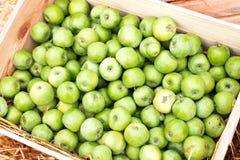 Πράσινα μήλα σε ένα κιβώτιο Στοκ φωτογραφία με δικαίωμα ελεύθερης χρήσης